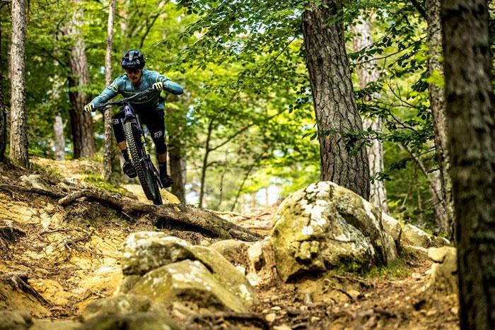 Bullit on trails