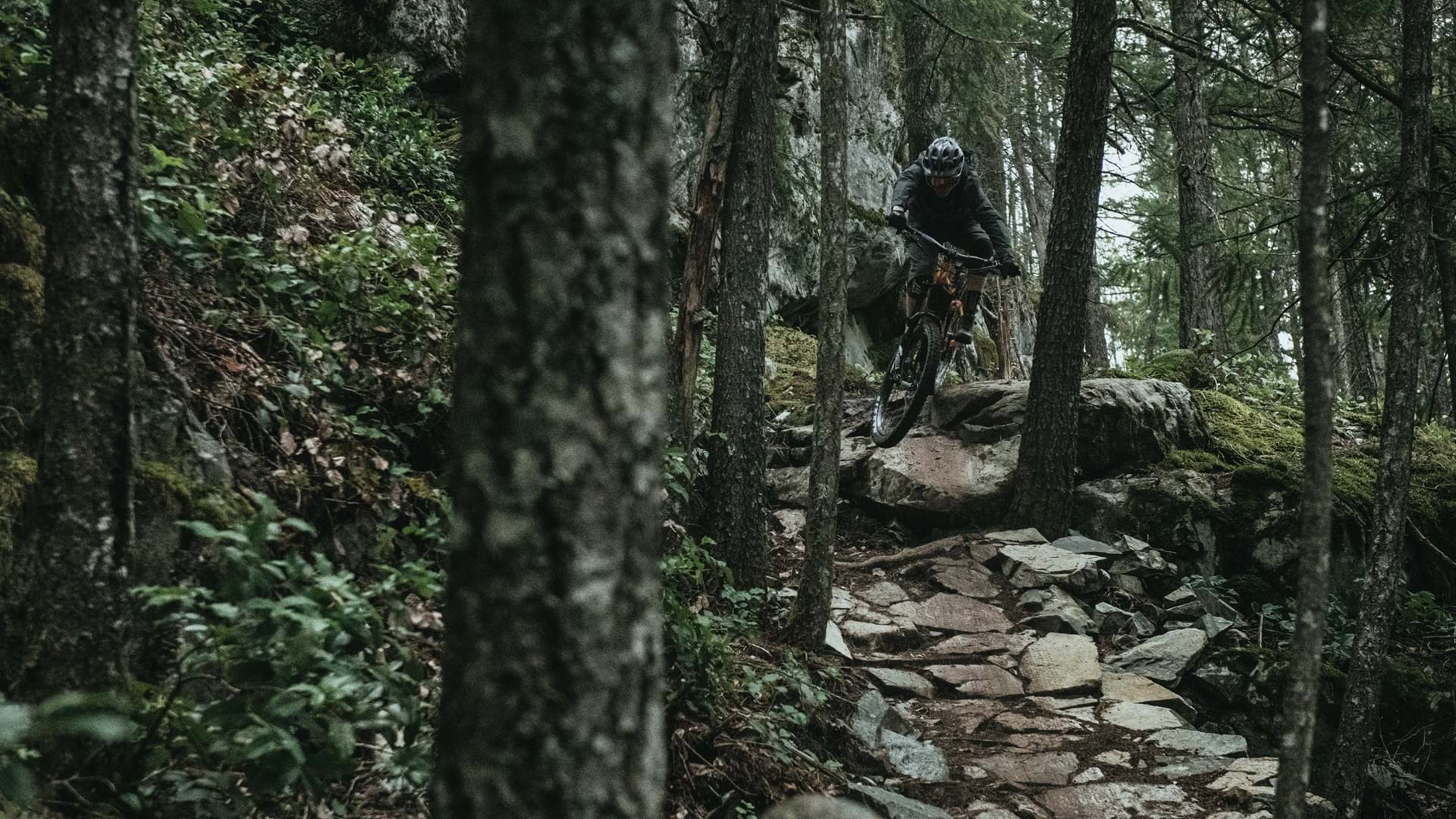 Devinci e-bikes tough and all-terrain