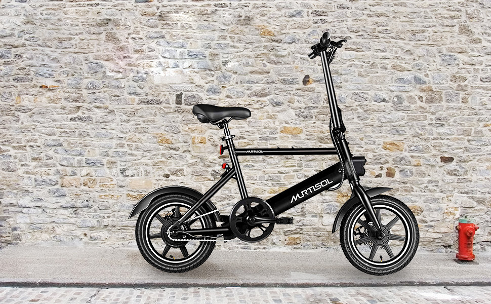Murtisol folding e-bike fashionable and affordable