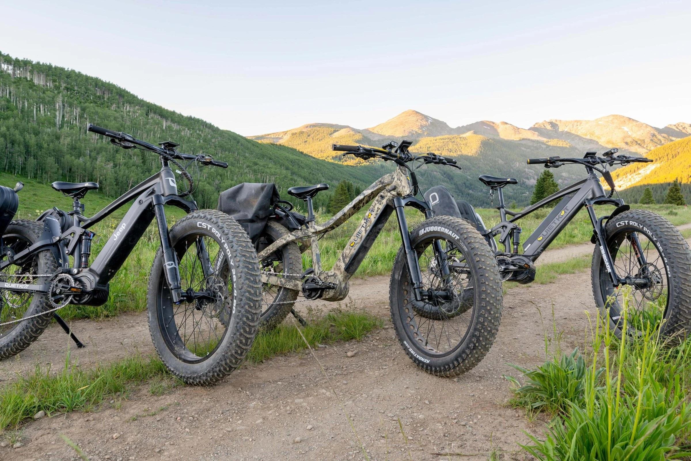 QuietKat Ranger e-bike Top class motor and battery
